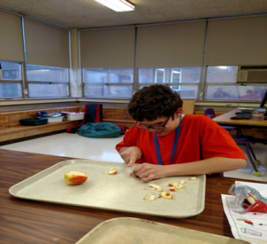 A student is sitting at a table with a large tray. He is chopping the white insides of a red apple into small sections.