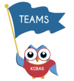Logo small blue owl with big round eyes, tiny beak, carrying a glue flag waving in the wind with word TEAMS printed on front. Wearing a red shirt with KCBAS on the front.