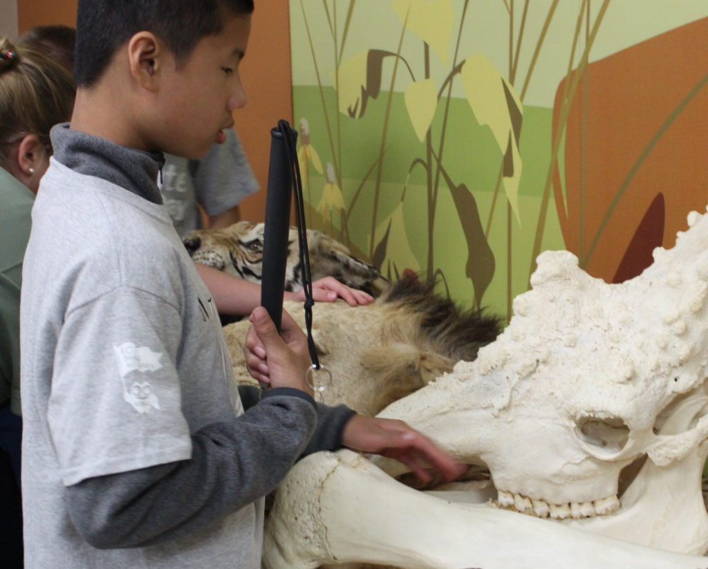 Student exploring the hands on zoo exhibits.